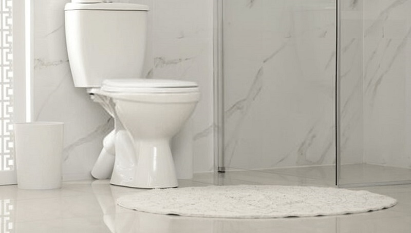 Best Elongated Toilets